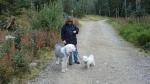 walking dogs in Taos