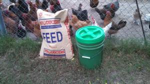 50-pound bucket