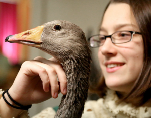 student with goose